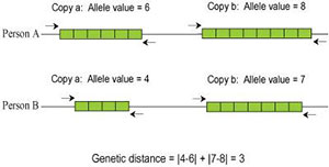 Y-DNA and its role in ancestry