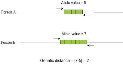 diagram calculating genetic distance